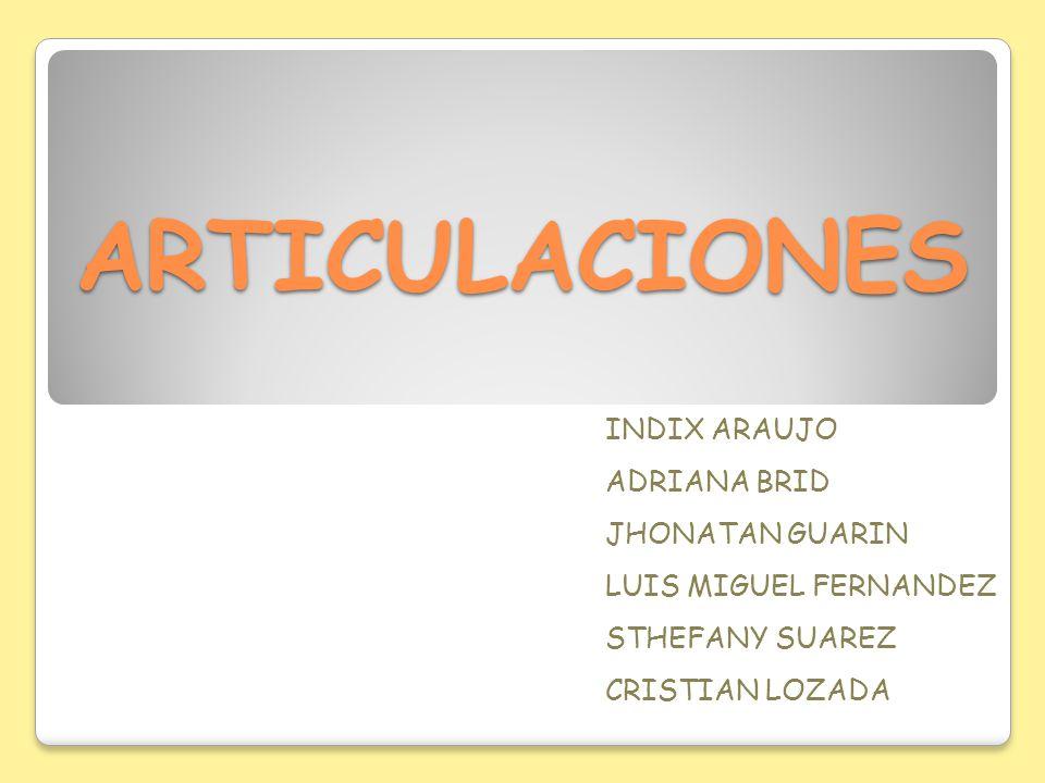 ARTICULACIONES INDIX ARAUJO ADRIANA BRID JHONATAN GUARIN LUIS MIGUEL FERNANDEZ STHEFANY SUAREZ CRISTIAN LOZADA