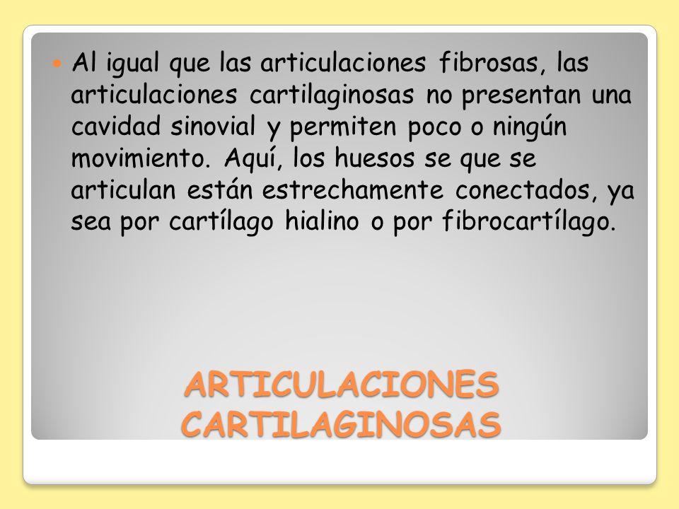 ARTICULACIONES CARTILAGINOSAS Al igual que las articulaciones fibrosas, las articulaciones cartilaginosas no presentan una cavidad sinovial y permiten