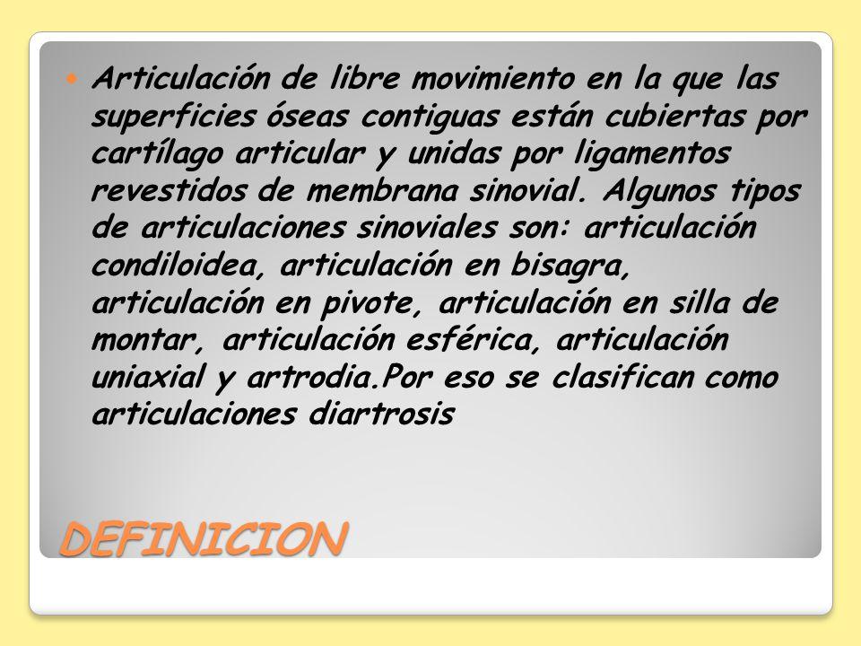 DEFINICION Articulación de libre movimiento en la que las superficies óseas contiguas están cubiertas por cartílago articular y unidas por ligamentos