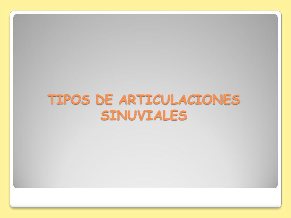 TIPOS DE ARTICULACIONES SINUVIALES
