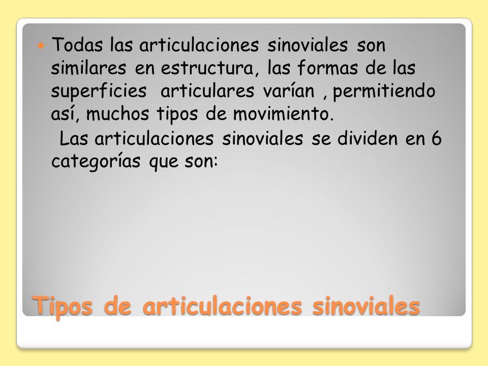 Tipos de articulaciones sinoviales Todas las articulaciones sinoviales son similares en estructura, las formas de las superficies articulares varían,