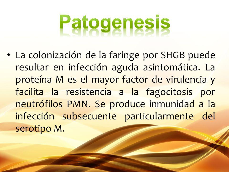 La colonización de la faringe por SHGB puede resultar en infección aguda asintomática. La proteína M es el mayor factor de virulencia y facilita la re