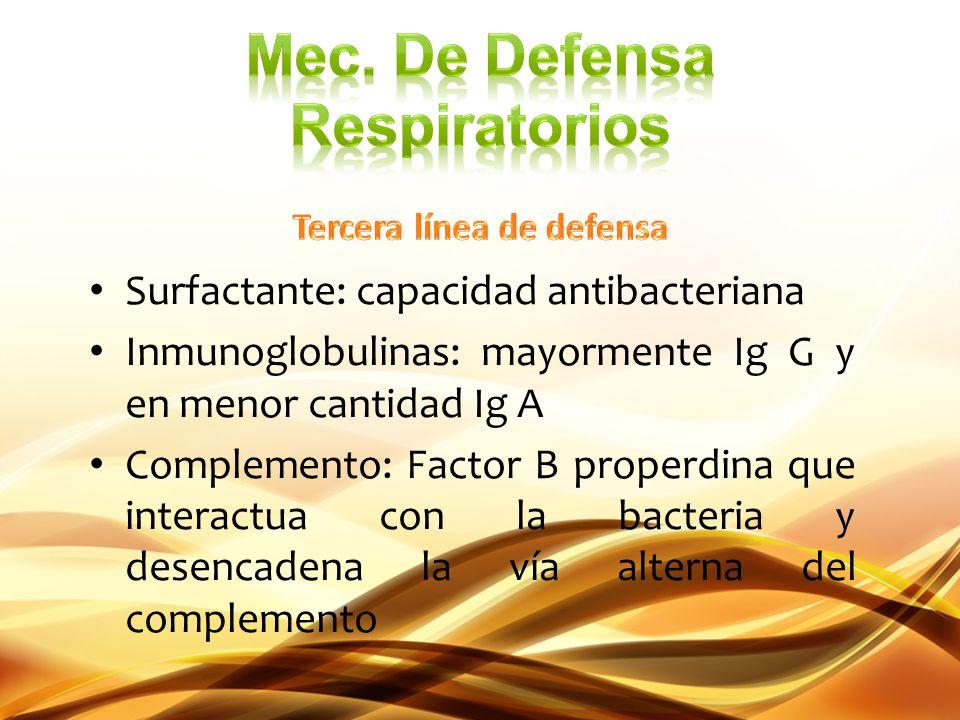 Surfactante: capacidad antibacteriana Inmunoglobulinas: mayormente Ig G y en menor cantidad Ig A Complemento: Factor B properdina que interactua con l
