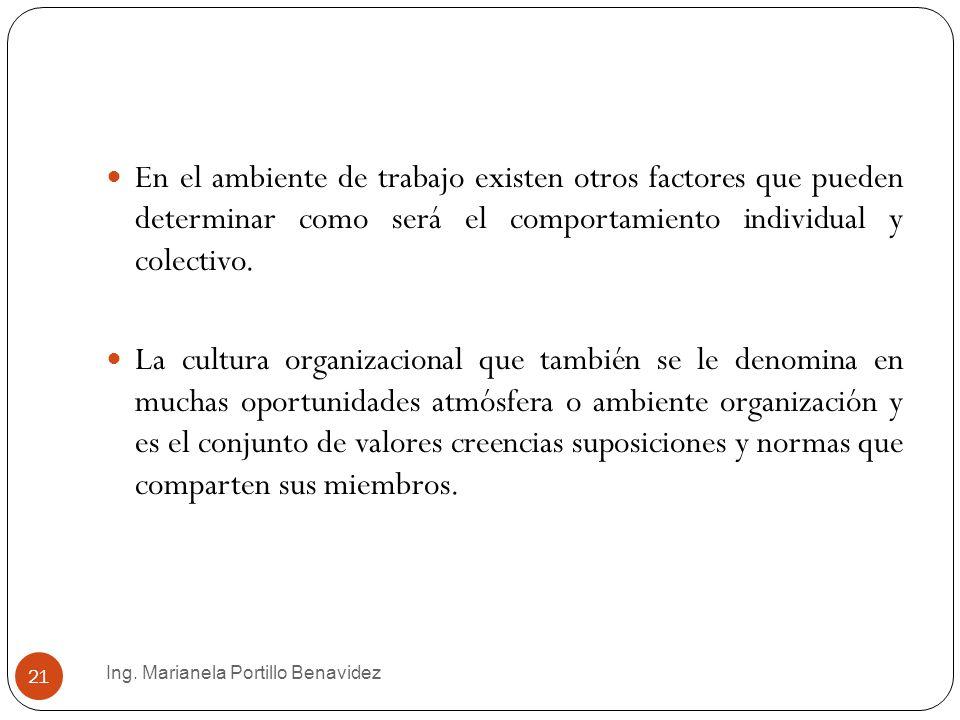 Ing. Marianela Portillo Benavidez 21 En el ambiente de trabajo existen otros factores que pueden determinar como será el comportamiento individual y c