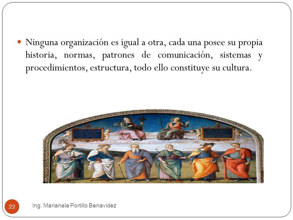 Ing. Marianela Portillo Benavidez 22 Ninguna organización es igual a otra, cada una posee su propia historia, normas, patrones de comunicación, sistem