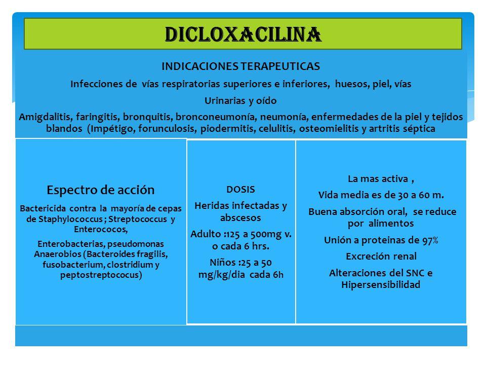 INDICACIONES TERAPEUTICAS Infecciones de vías respiratorias superiores e inferiores, huesos, piel, vías Urinarias y oído Amigdalitis, faringitis, bron