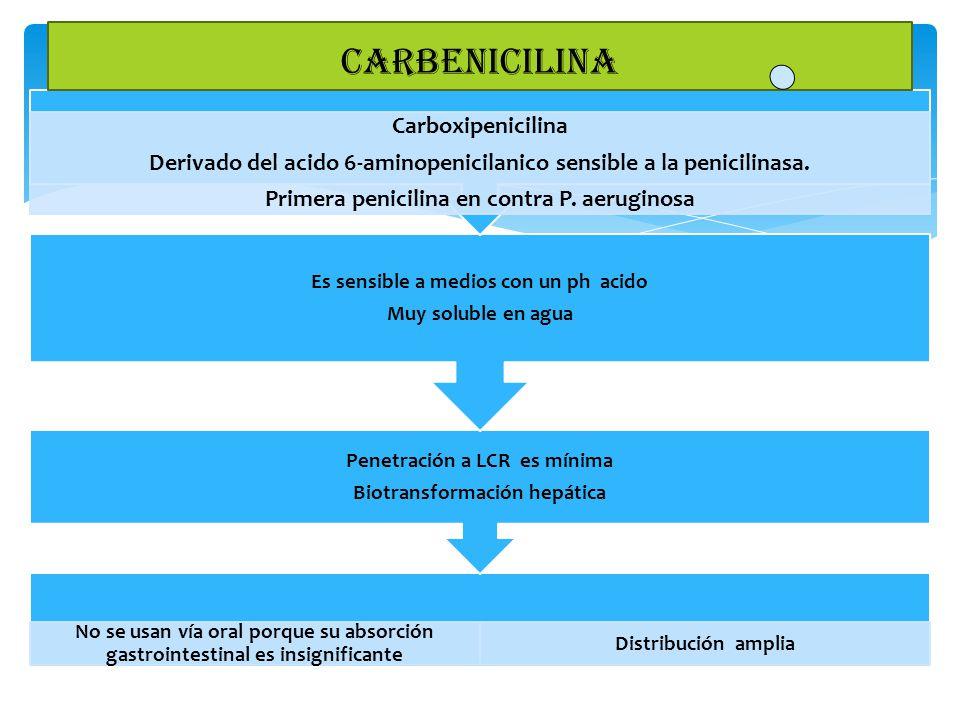 No se usan vía oral porque su absorción gastrointestinal es insignificante Distribución amplia Penetración a LCR es mínima Biotransformación hepática