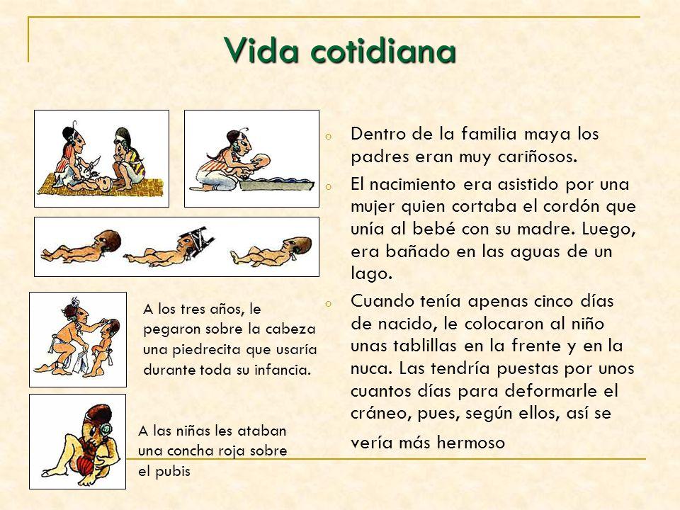 Vida cotidiana oDoDentro de la familia maya los padres eran muy cariñosos. oEoEl nacimiento era asistido por una mujer quien cortaba el cordón que uní