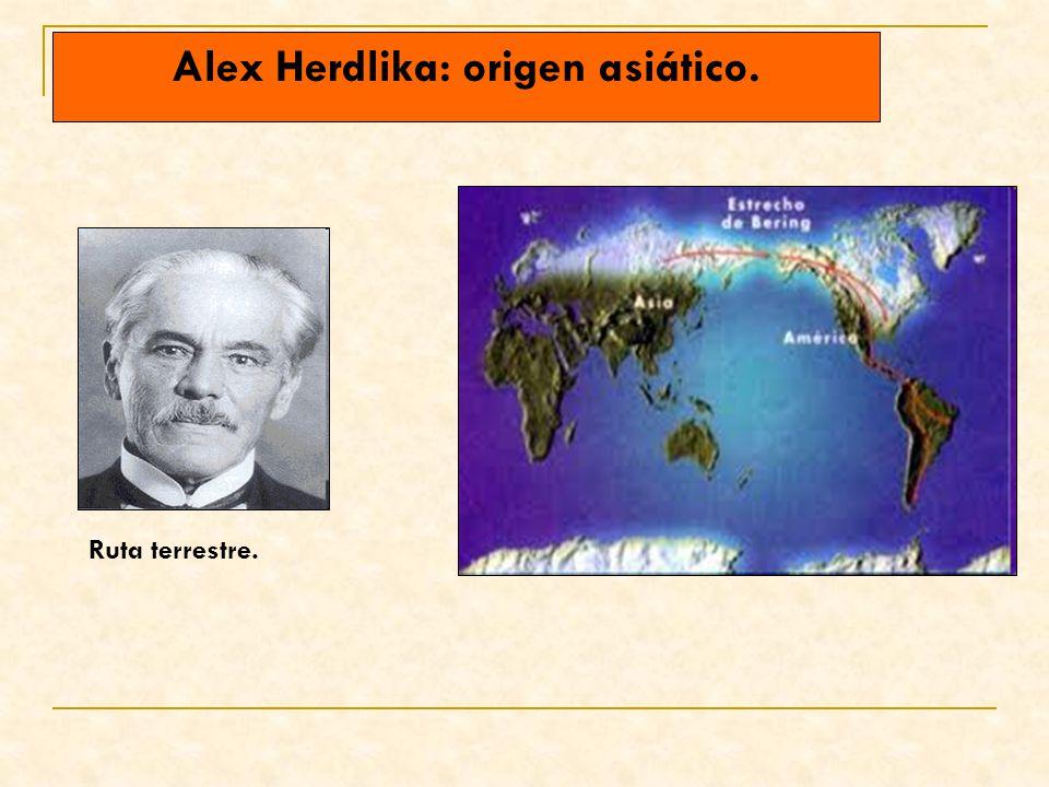 Alex Herdlika: origen asiático. Ruta terrestre.