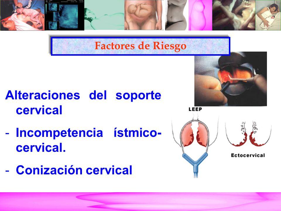 Parto Pretérmino Alteraciones del soporte cervical -Incompetencia ístmico- cervical. -Conización cervical Factores de Riesgo