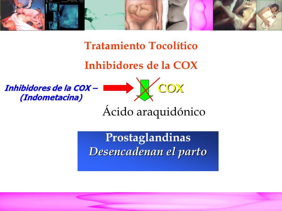 Parto Pretérmino Ácido araquidónico Prostaglandinas Desencadenan el parto COX Inhibidores de la COX – (Indometacina) Tratamiento Tocolítico Inhibidore