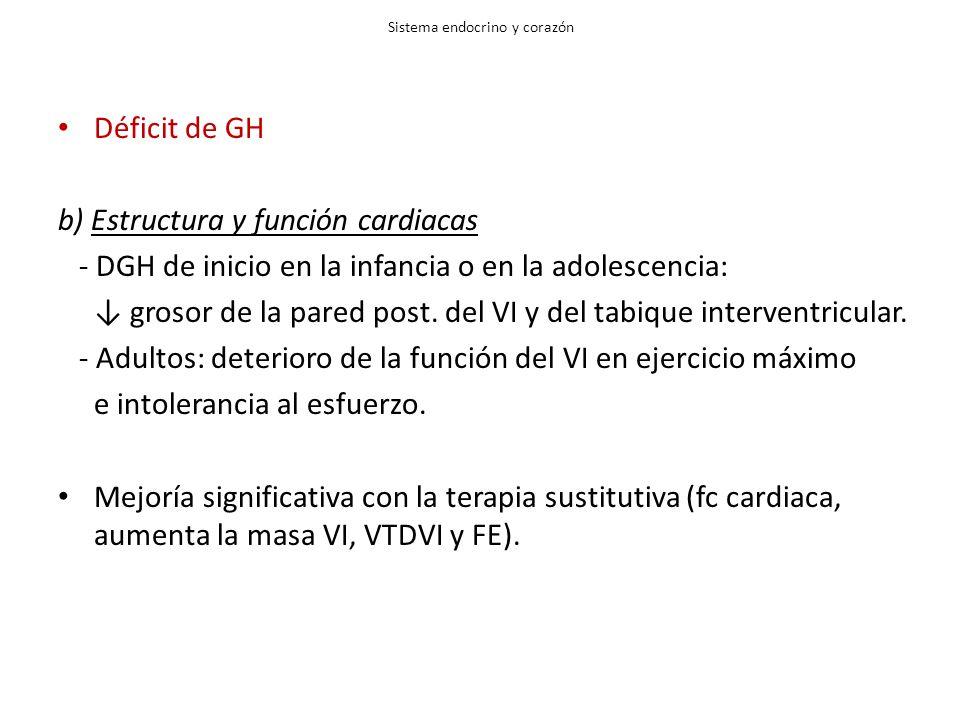 Sistema endocrino y corazón Déficit de GH b) Estructura y función cardiacas - DGH de inicio en la infancia o en la adolescencia: grosor de la pared po