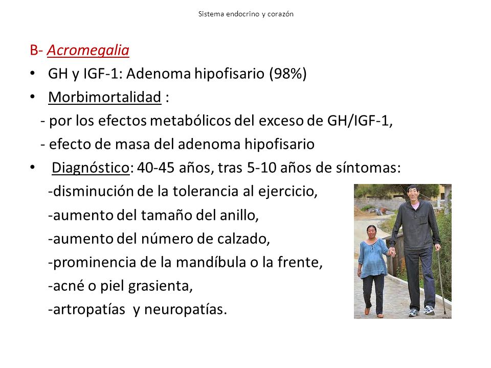 Sistema endocrino y corazón B- Acromegalia GH y IGF-1: Adenoma hipofisario (98%) Morbimortalidad : - por los efectos metabólicos del exceso de GH/IGF-1, - efecto de masa del adenoma hipofisario Diagnóstico: 40-45 años, tras 5-10 años de síntomas: -disminución de la tolerancia al ejercicio, -aumento del tamaño del anillo, -aumento del número de calzado, -prominencia de la mandíbula o la frente, -acné o piel grasienta, -artropatías y neuropatías.