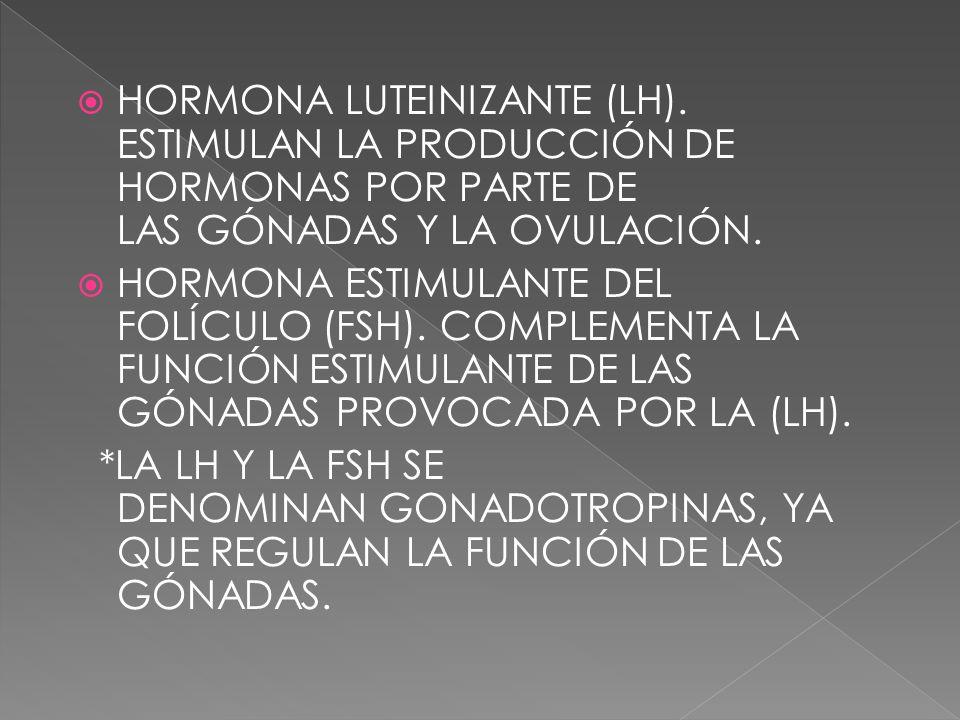 HORMONA LUTEINIZANTE (LH). ESTIMULAN LA PRODUCCIÓN DE HORMONAS POR PARTE DE LAS GÓNADAS Y LA OVULACIÓN. HORMONA ESTIMULANTE DEL FOLÍCULO (FSH). COMPLE