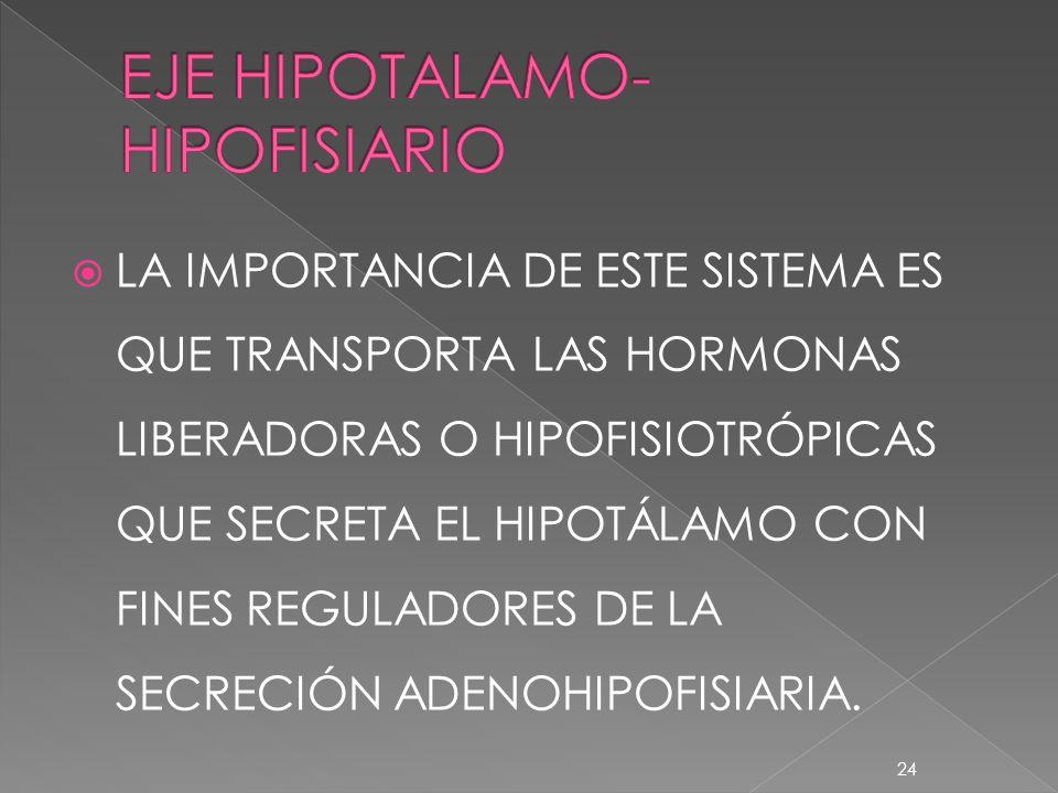 LA IMPORTANCIA DE ESTE SISTEMA ES QUE TRANSPORTA LAS HORMONAS LIBERADORAS O HIPOFISIOTRÓPICAS QUE SECRETA EL HIPOTÁLAMO CON FINES REGULADORES DE LA SE