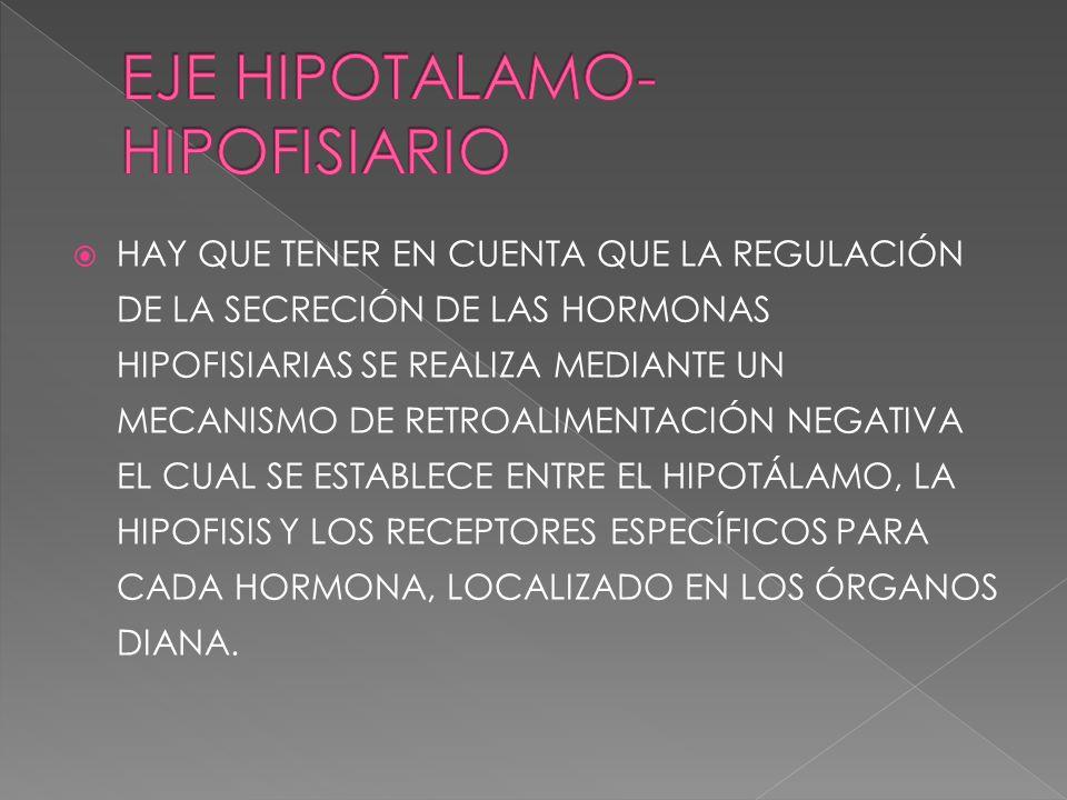 HAY QUE TENER EN CUENTA QUE LA REGULACIÓN DE LA SECRECIÓN DE LAS HORMONAS HIPOFISIARIAS SE REALIZA MEDIANTE UN MECANISMO DE RETROALIMENTACIÓN NEGATIVA