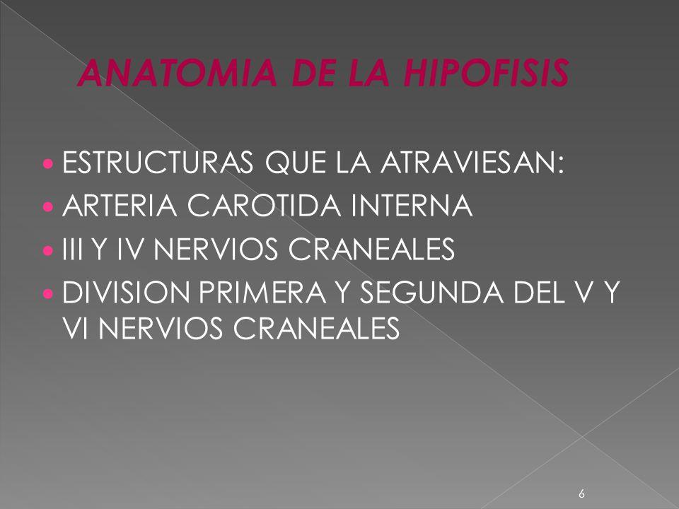 ESTRUCTURAS QUE LA ATRAVIESAN: ARTERIA CAROTIDA INTERNA III Y IV NERVIOS CRANEALES DIVISION PRIMERA Y SEGUNDA DEL V Y VI NERVIOS CRANEALES 6