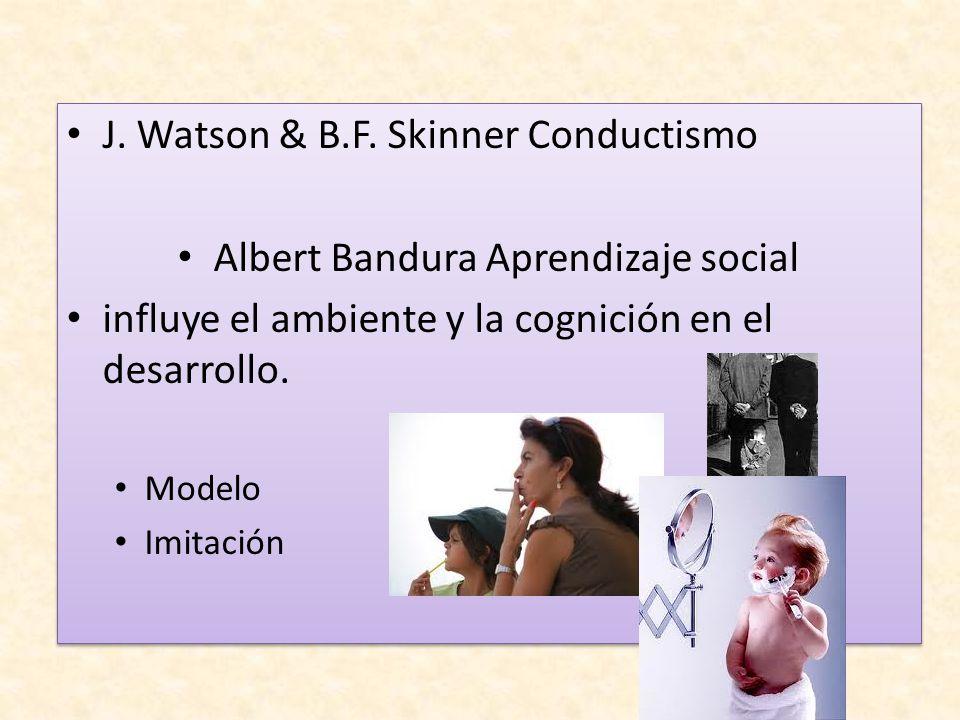J. Watson & B.F. Skinner Conductismo Albert Bandura Aprendizaje social influye el ambiente y la cognición en el desarrollo. Modelo Imitación J. Watson