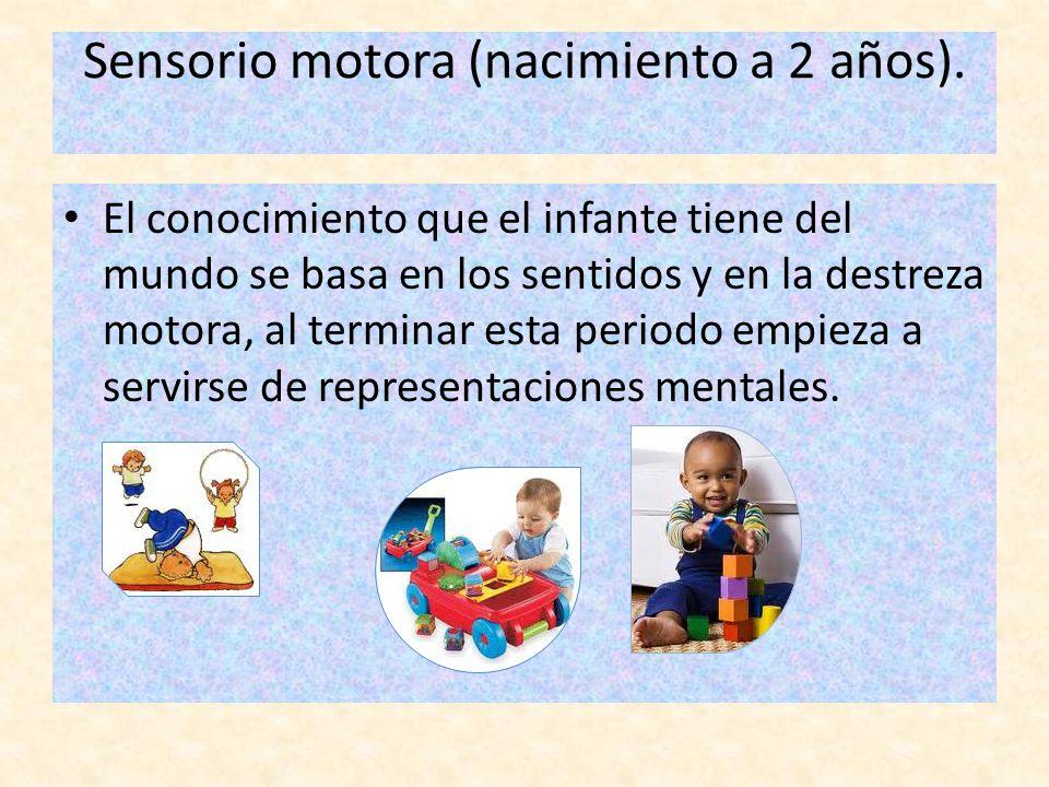 Sensorio motora (nacimiento a 2 años). El conocimiento que el infante tiene del mundo se basa en los sentidos y en la destreza motora, al terminar est