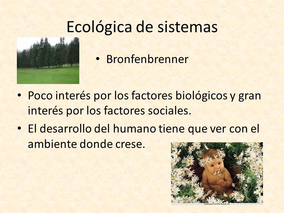 Ecológica de sistemas Bronfenbrenner Poco interés por los factores biológicos y gran interés por los factores sociales. El desarrollo del humano tiene