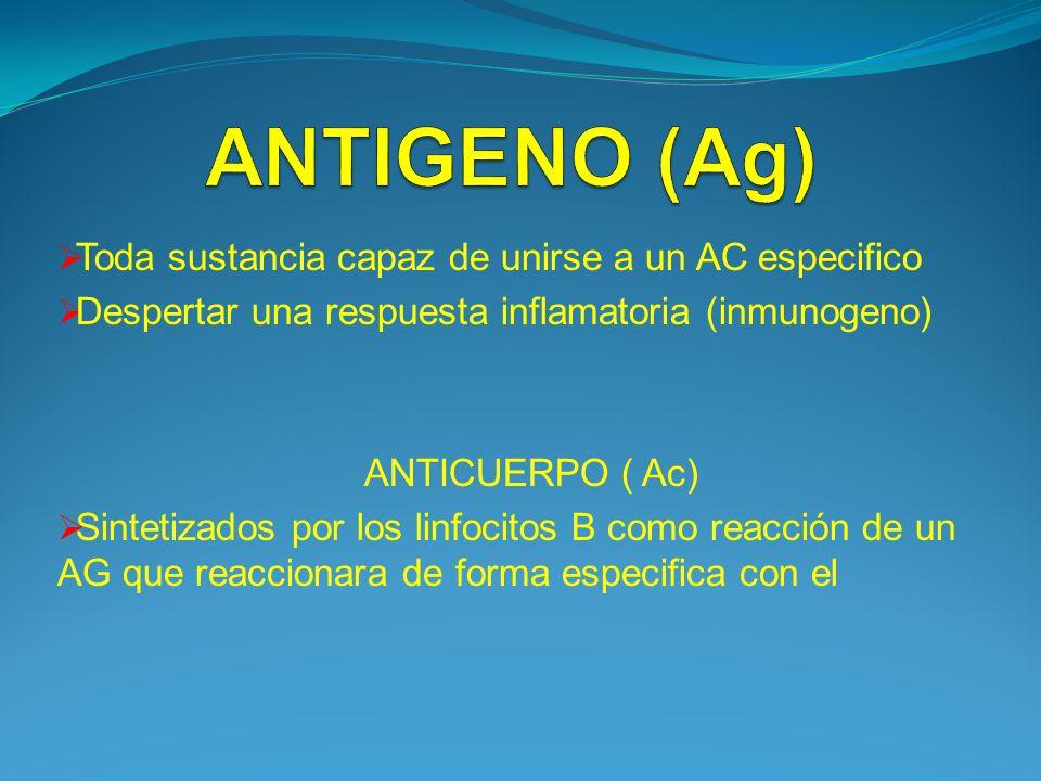 Toda sustancia capaz de unirse a un AC especifico Despertar una respuesta inflamatoria (inmunogeno) ANTICUERPO ( Ac) Sintetizados por los linfocitos B