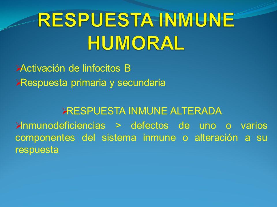 Activación de linfocitos B Respuesta primaria y secundaria RESPUESTA INMUNE ALTERADA Inmunodeficiencias > defectos de uno o varios componentes del sis