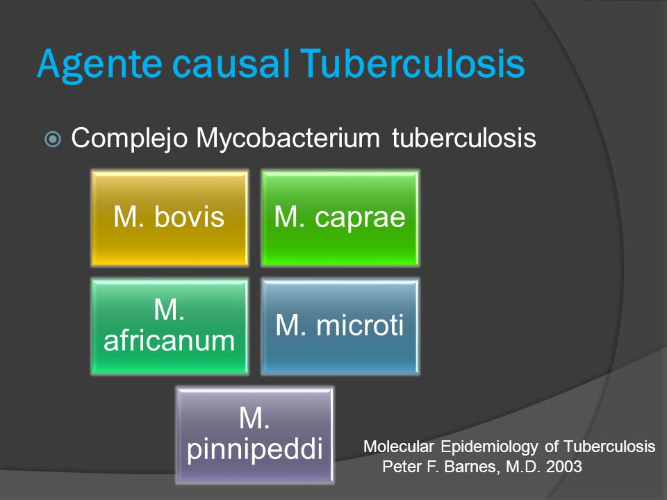 Agente causal Tuberculosis Complejo Mycobacterium tuberculosis M. bovisM. caprae M. africanum M. microti M. pinnipeddi Molecular Epidemiology of Tuber