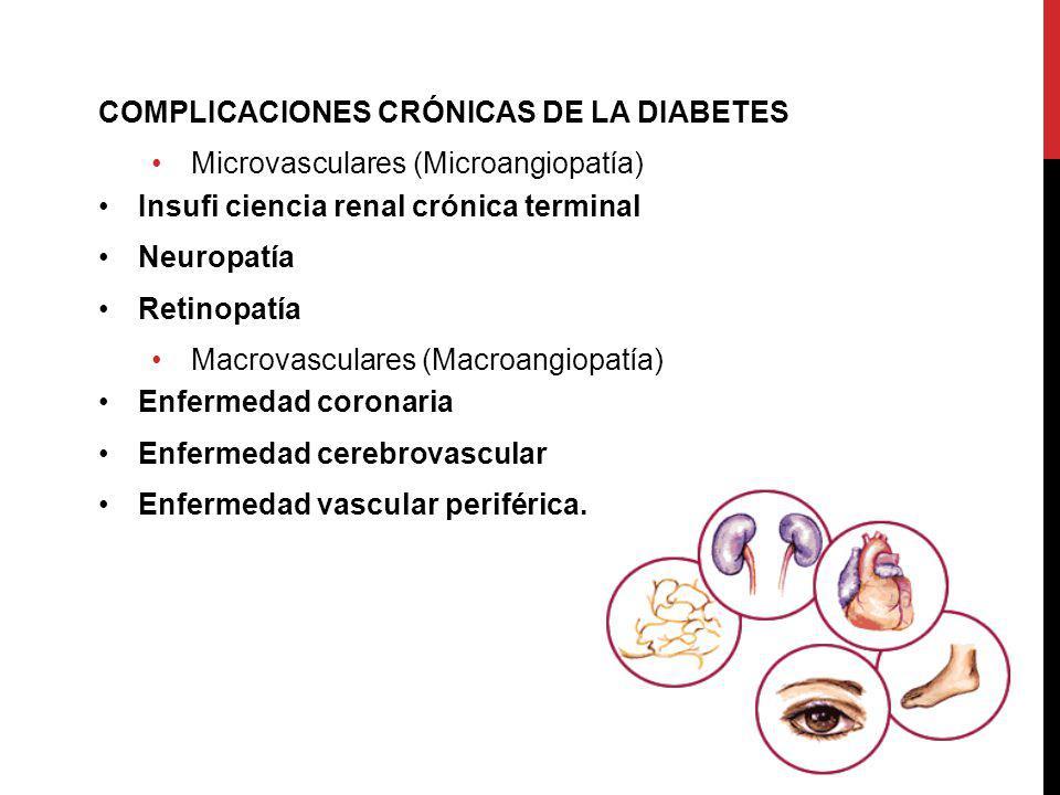 COMPLICACIONES CRÓNICAS DE LA DIABETES Microvasculares (Microangiopatía) Insufi ciencia renal crónica terminal Neuropatía Retinopatía Macrovasculares