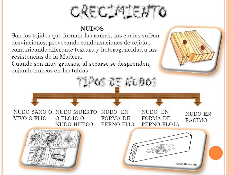 La forma del nudo sobre la pieza de madera depende de la forma en que se corta
