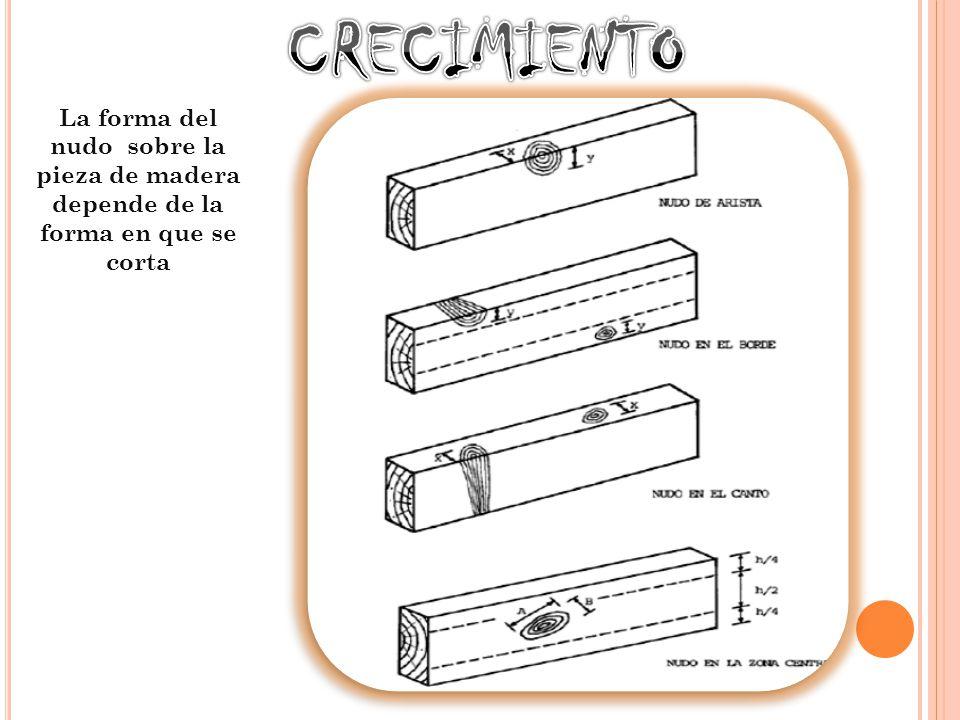 MEDULA INCLUIDA Cuando en el tronco queda incluida la medula dentro de una pieza de madera aserrada es considerada como un defecto por presentar una zona débil.