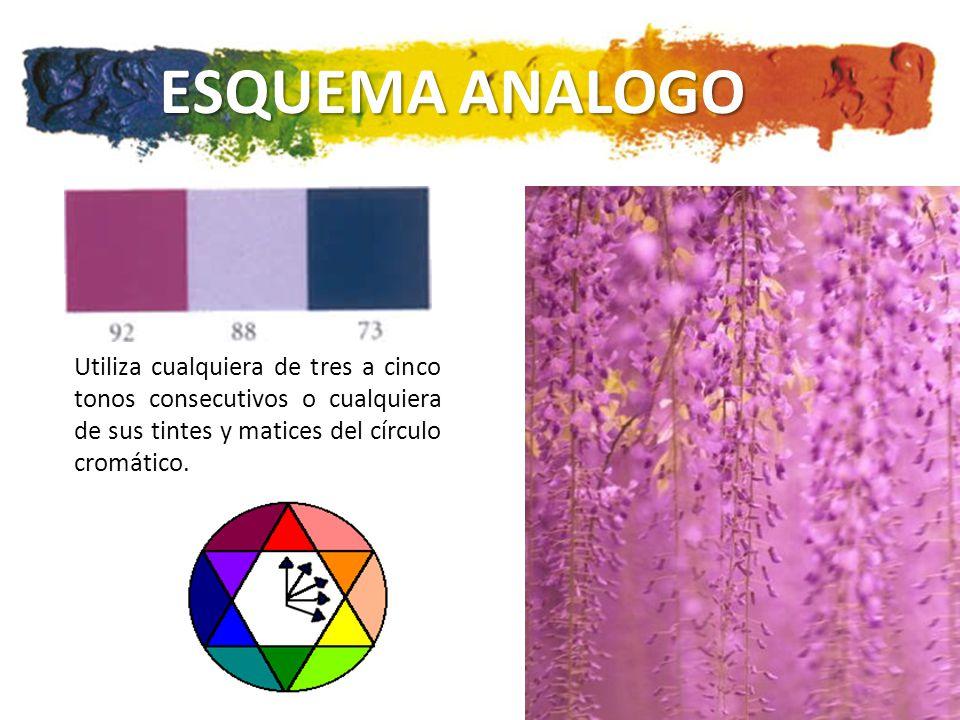 ESQUEMA ANALOGO Utiliza cualquiera de tres a cinco tonos consecutivos o cualquiera de sus tintes y matices del círculo cromático.