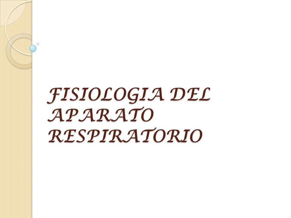 VENTILACION Movimiento del aire desde el exterior hacia el interior del organismo y su distribución en el sistema traqueobraquial hasta las unidades de intercambio gaseoso de los pulmones.