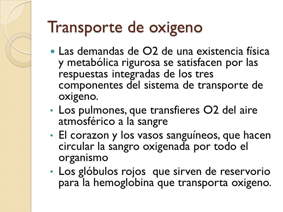 Transporte de oxigeno Las demandas de O2 de una existencia física y metabólica rigurosa se satisfacen por las respuestas integradas de los tres compon