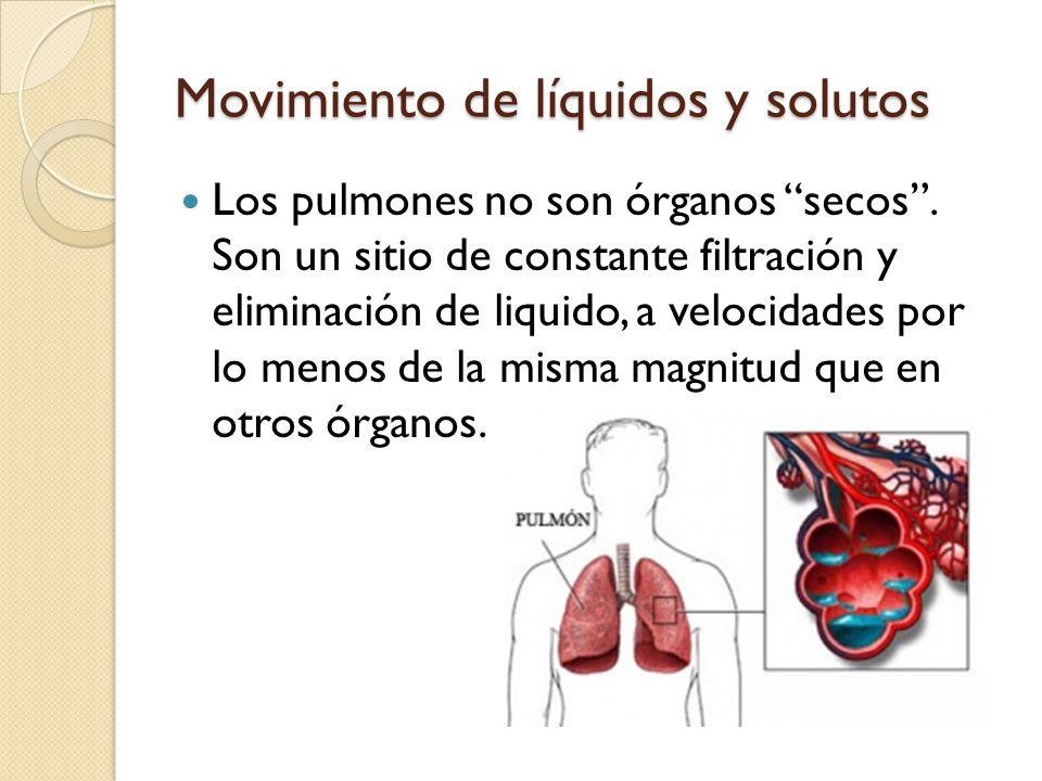 Movimiento de líquidos y solutos Los pulmones no son órganos secos. Son un sitio de constante filtración y eliminación de liquido, a velocidades por l