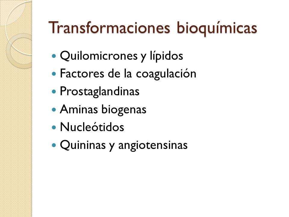 Transformaciones bioquímicas Quilomicrones y lípidos Factores de la coagulación Prostaglandinas Aminas biogenas Nucleótidos Quininas y angiotensinas