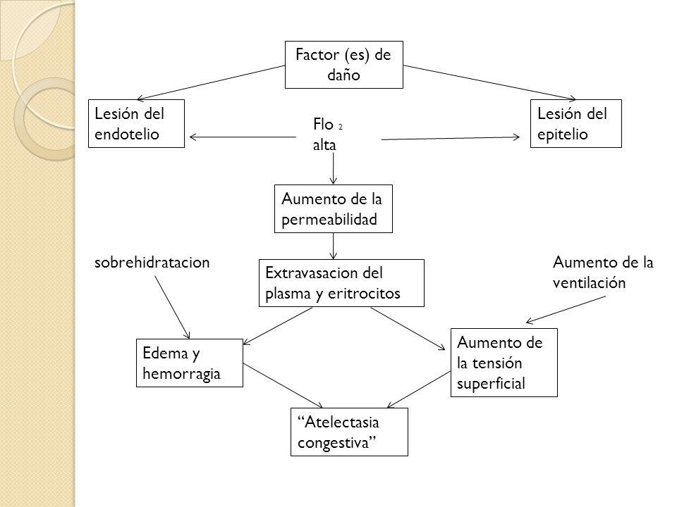 Factor (es) de daño Lesión del epitelio Lesión del endotelio Aumento de la permeabilidad Extravasacion del plasma y eritrocitos Aumento de la tensión