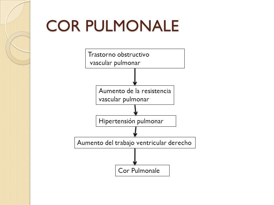 COR PULMONALE Trastorno obstructivo vascular pulmonar Aumento de la resistencia vascular pulmonar Hipertensión pulmonar Aumento del trabajo ventricula