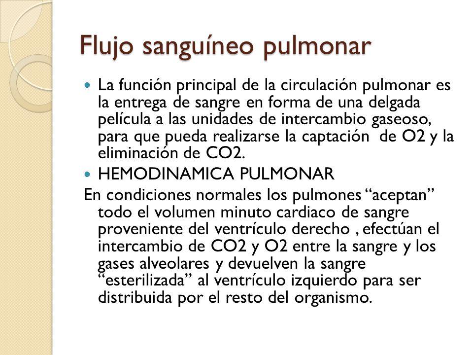 Flujo sanguíneo pulmonar La función principal de la circulación pulmonar es la entrega de sangre en forma de una delgada película a las unidades de in