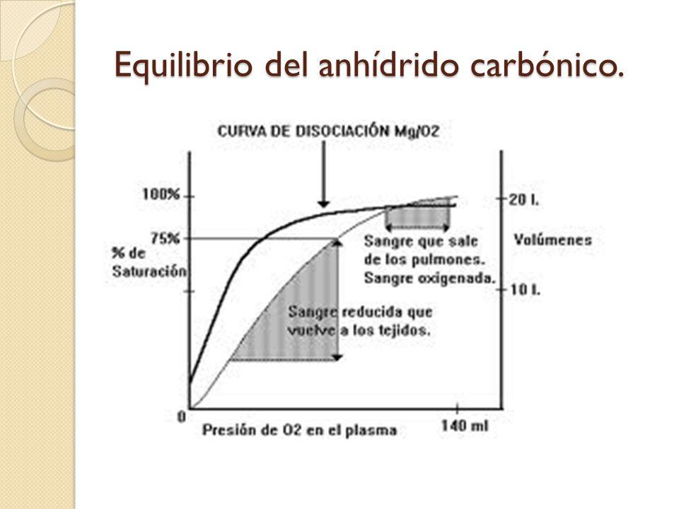 Equilibrio del anhídrido carbónico.