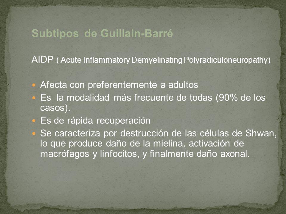 Subtipos de Guillain-Barré AIDP ( Acute Inflammatory Demyelinating Polyradiculoneuropathy) Afecta con preferentemente a adultos Es la modalidad más fr