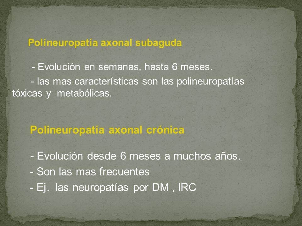 Polineuropatía axonal subaguda - Evolución en semanas, hasta 6 meses. - las mas características son las polineuropatías tóxicas y metabólicas. Polineu