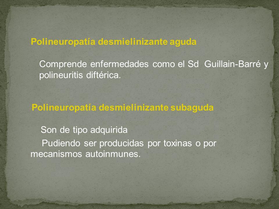 Polineuropatía desmielinizante aguda Comprende enfermedades como el Sd Guillain-Barré y polineuritis diftérica. Polineuropatía desmielinizante subagud