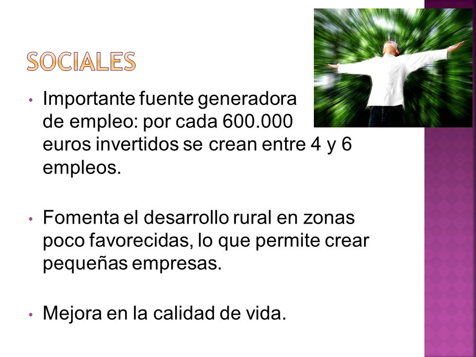 Importante fuente generadora de empleo: por cada 600.000 euros invertidos se crean entre 4 y 6 empleos.