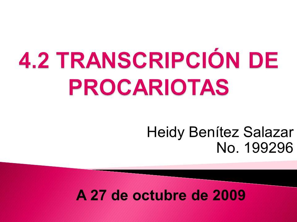 Heidy Benítez Salazar No. 199296 A 27 de octubre de 2009