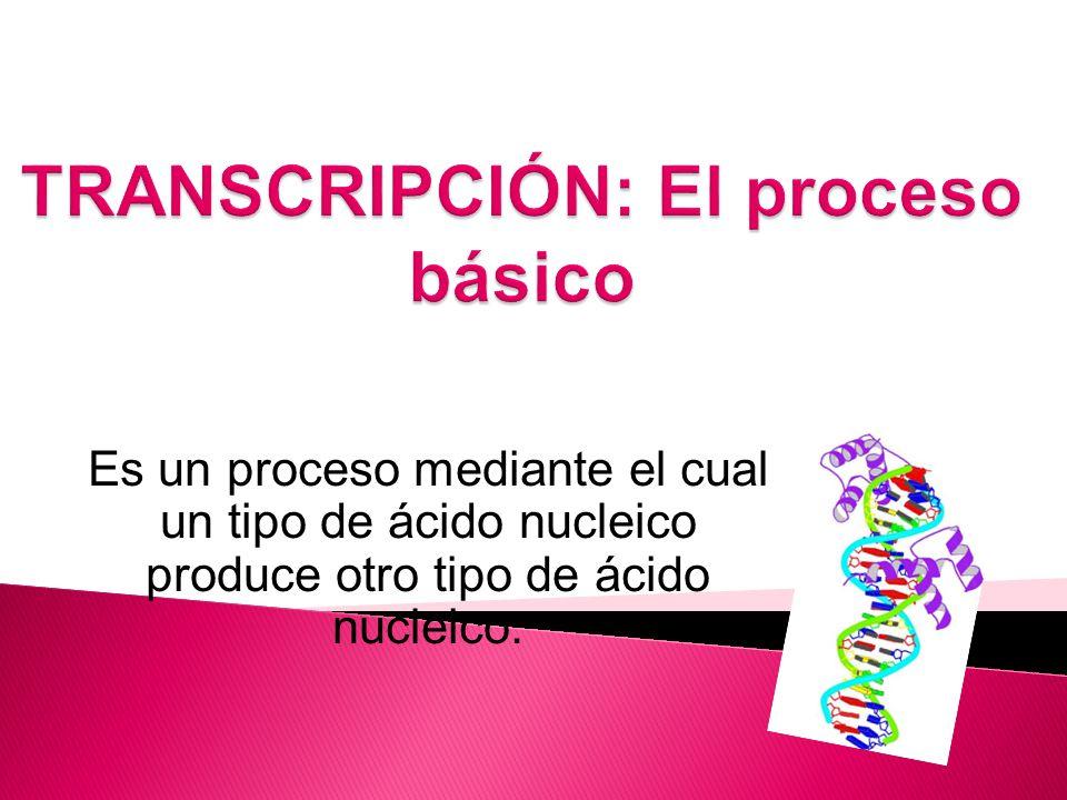Es un proceso mediante el cual un tipo de ácido nucleico produce otro tipo de ácido nucleico.