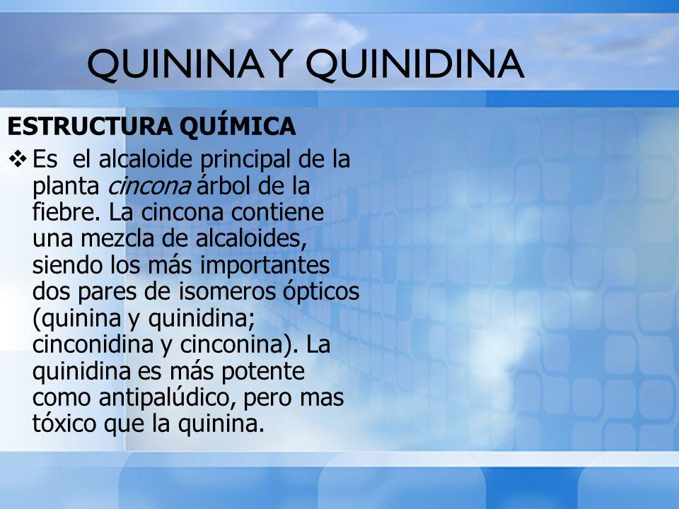 QUININA Y QUINIDINA ESTRUCTURA QUÍMICA Es el alcaloide principal de la planta cincona árbol de la fiebre. La cincona contiene una mezcla de alcaloides