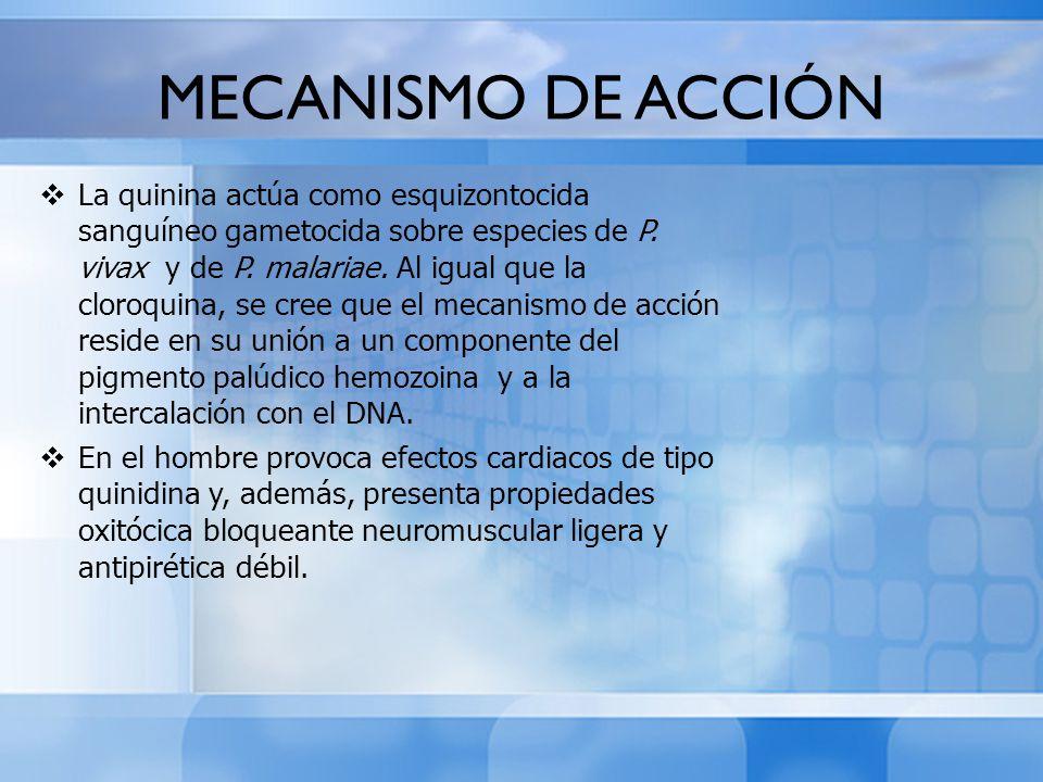 MECANISMO DE ACCIÓN La quinina actúa como esquizontocida sanguíneo gametocida sobre especies de P. vivax y de P. malariae. Al igual que la cloroquina,