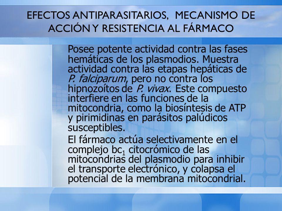EFECTOS ANTIPARASITARIOS, MECANISMO DE ACCIÓN Y RESISTENCIA AL FÁRMACO Posee potente actividad contra las fases hemáticas de los plasmodios. Muestra a