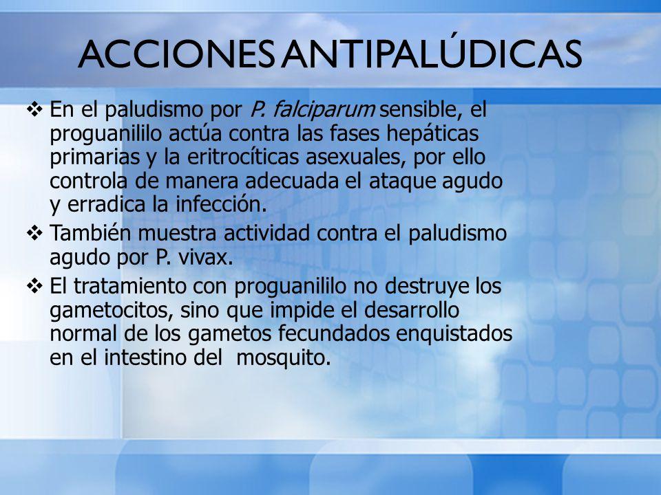 ACCIONES ANTIPALÚDICAS En el paludismo por P. falciparum sensible, el proguanililo actúa contra las fases hepáticas primarias y la eritrocíticas asexu