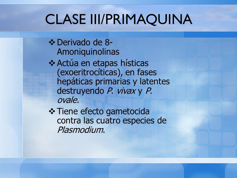 CLASE III/PRIMAQUINA Derivado de 8- Amoniquinolinas Actúa en etapas hísticas (exoeritrocíticas), en fases hepáticas primarias y latentes destruyendo P